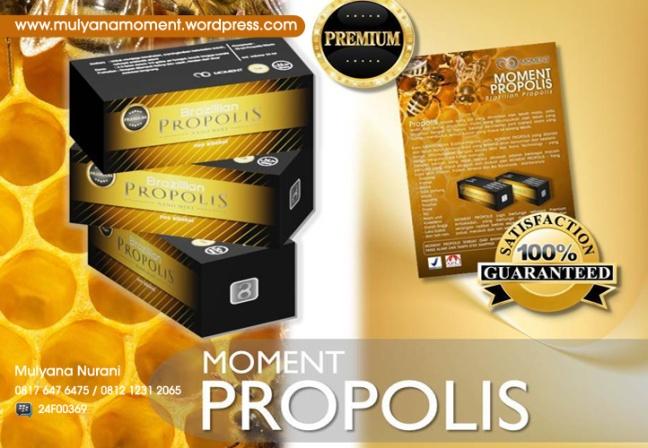 Propolis,Moment Propolis, Jual Propolis Moment, Madu Propolis, Propolis Brazil, Tempat Beli Propolis, Jual Propolis di Bogor